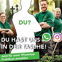 WhatsApp-Praktikum auf dem Friedhof